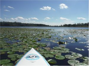paddle boarding in north eastern Illinois